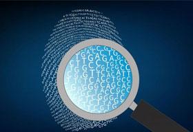 DiaCarta - Translational Genomics Powered by Molecular Clamp Technology